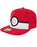 Pokemon 3D Pokeball Snapback Cap