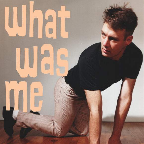 What Was Me by Calvin Johnson on K Records