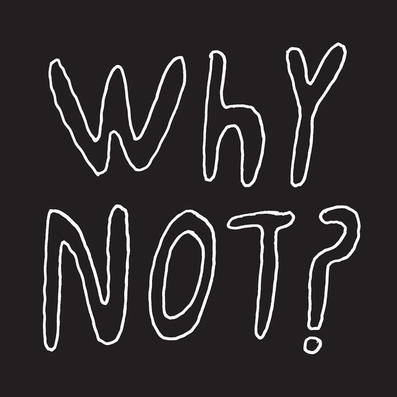 Why Not? by Half Japanese on Fire Records