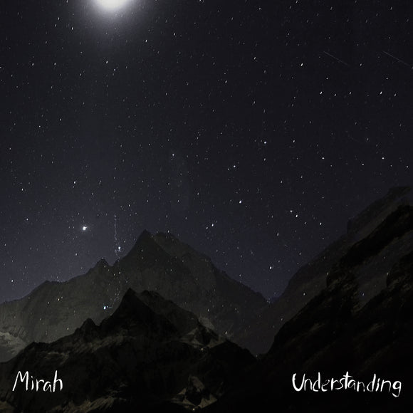 Understanding by Mirah on Absolute Magnitude Recordings / K Records