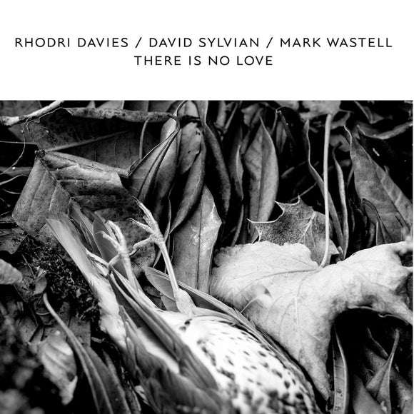Rhodri Davies, David Sylvian & Mark Wastell - There Is No Love