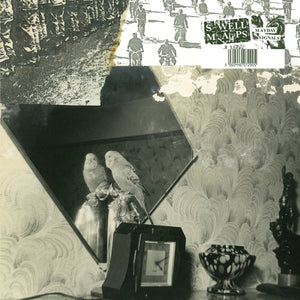 Mayday Signals by Swell Maps on Easy Action Records (the album cover is black and white collage; the main image is of a cockatiel perched above a clock, looking into a mirror).