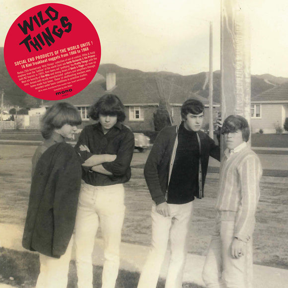 Various - Wild Things: 16 Freakbeat Nuggets From 1966 - 1968