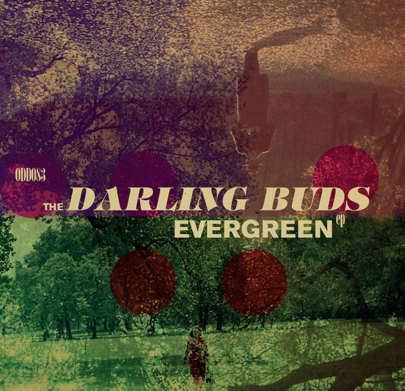 The Darling Buds - Evergreen EP