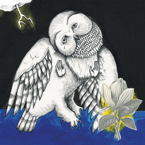 Magnolia Electric Co. by Songs: Ohia on Secretly Canadian Records