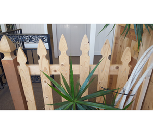 "French Gothic Fir Picket 1"" x 4"" x 4'"