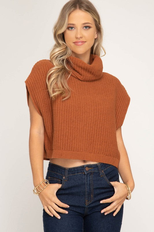 Cowl Neck Crop Sweater