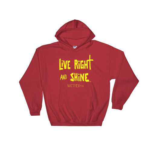 """LiVE RiGHT and SHiNE"" Hooded Sweatshirt Unisex"
