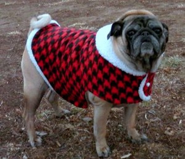 Red and Black Fleece Houndstooth
