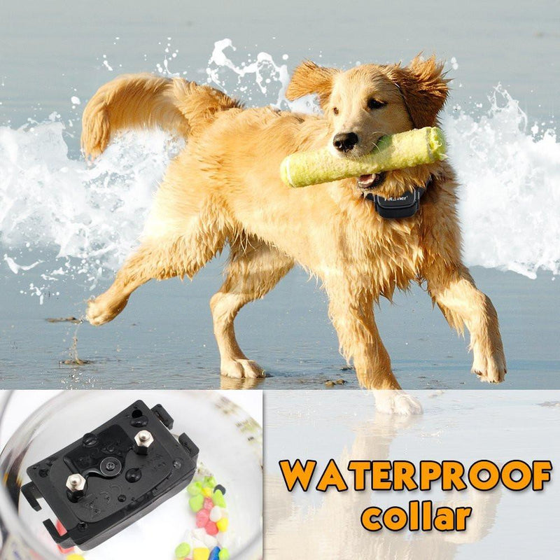 Petrainer PET998DRU Waterproof Collar