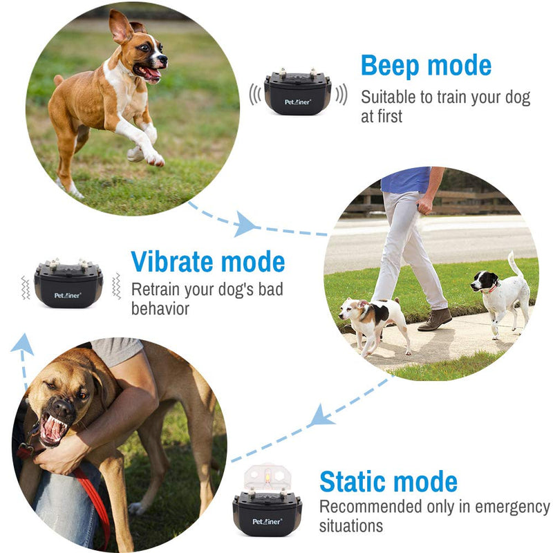 Petrainer PET998DRB2 E-Collar