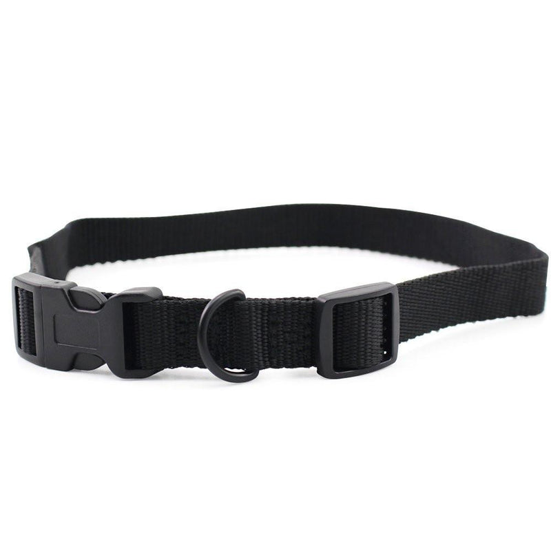 Petrainer Nylon Dog Collar Strap