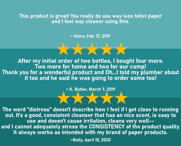 Pristine toilet paper spray wet wipe alternative five star reviews
