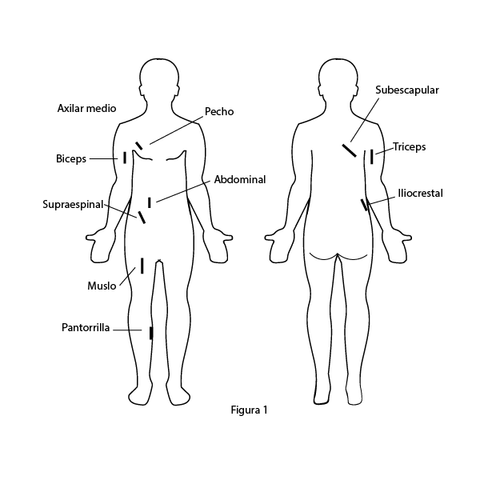 Skinfold measurement sites on the body