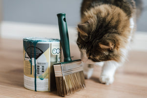 7 Easy DIY Pet Projects