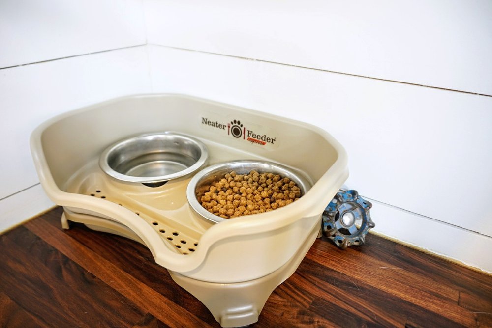 What Are The Safest Dog Bowls Available?