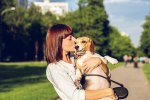Top 7 Pet Insurance Companies of 2021