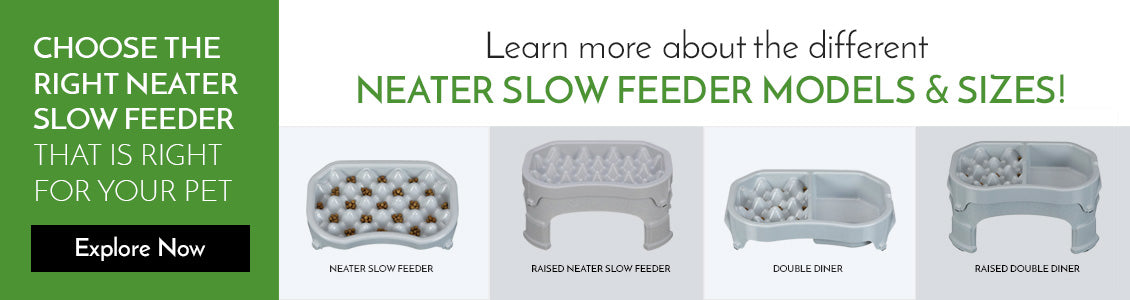 Stainless Steel Slow Feeders