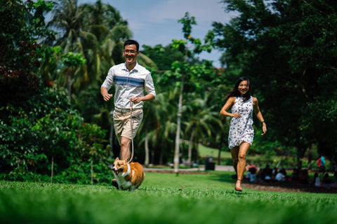 couple at park with dog
