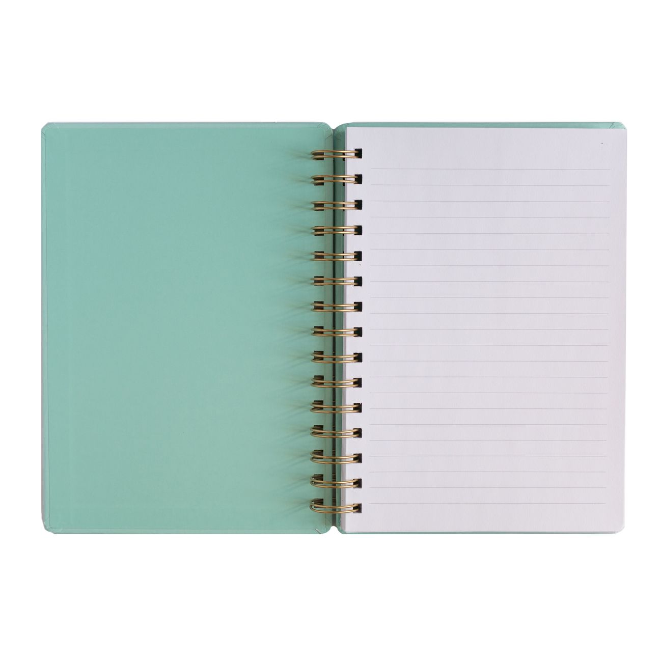 SWD Boss Lady Mint Spiral Notebook