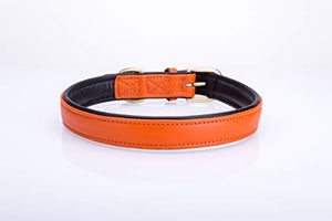 Pear Tannery Soft Padded Flat Leather Dog Collar