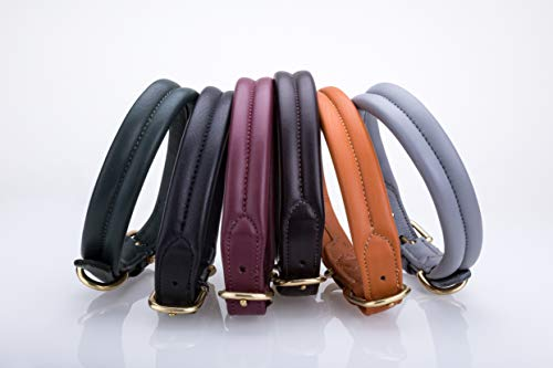 Pear Tannery Thick Soft Padded Flat Leather Dog Collar