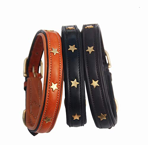 Pear Tannery Padded Leather Dog Collar With Star