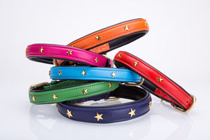 Pear Tannery Soft Padded Flat Leather Dog Collar star