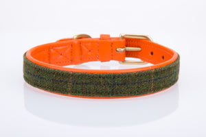 Super soft padded star leather collar