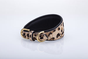 Pear Tannery Leopard Print Padded Flat Leather GreyHound Collar