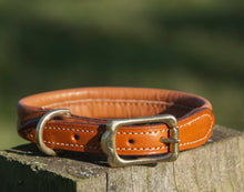 Pear Tannery Soft Padded Leather Dog Collar