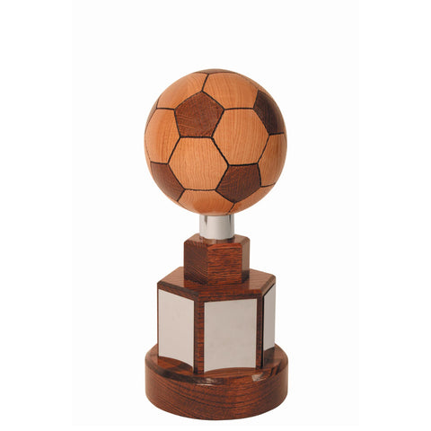 Championship Football Trophy