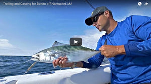 Casting & Trolling for Atlantic Bonito