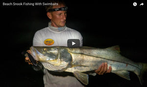 How-To: The Best Swimbaits for Beach Snook