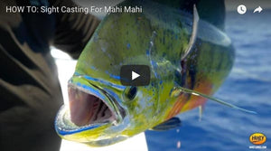 How-To: Sight Casting for Mahi