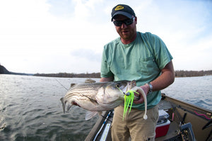 Pro Talk: Slow Rolling Swim Baits for River Stripers