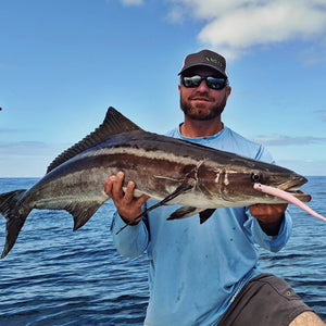 Pro Talk: Sight Casting for Cobia on Bull Sharks with the Pro Tail Eel