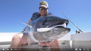 Casting Swimbaits for Bluefin Tuna