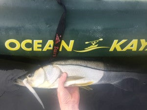 Pro Talk: Top Lures for Charlotte Harbor Snook