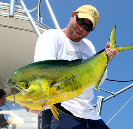 Q&A: Offshore Florida Spreader Bar Trolling