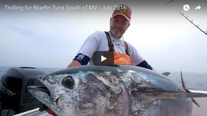 How To Troll for Bluefin Tuna South of Martha's Vineyard
