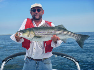 How-To: Choosing the Best Striper Lures for Worm Hatches