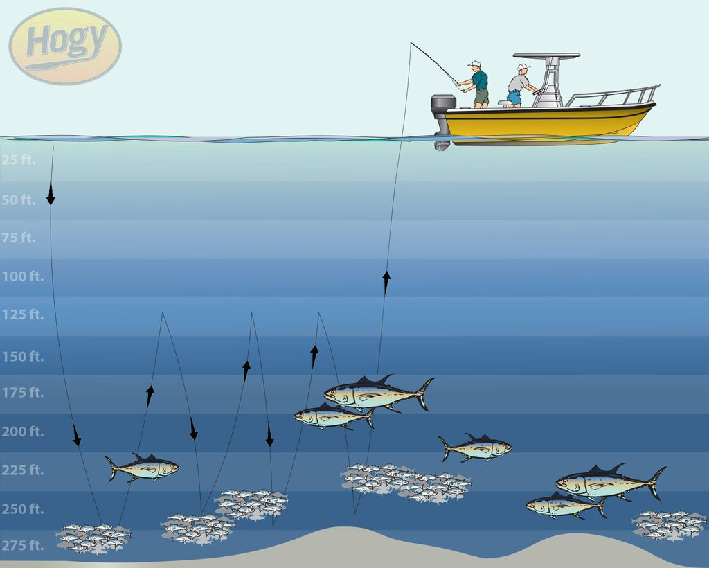 Hogy Lures How To Slow Jig Tuna Diagram