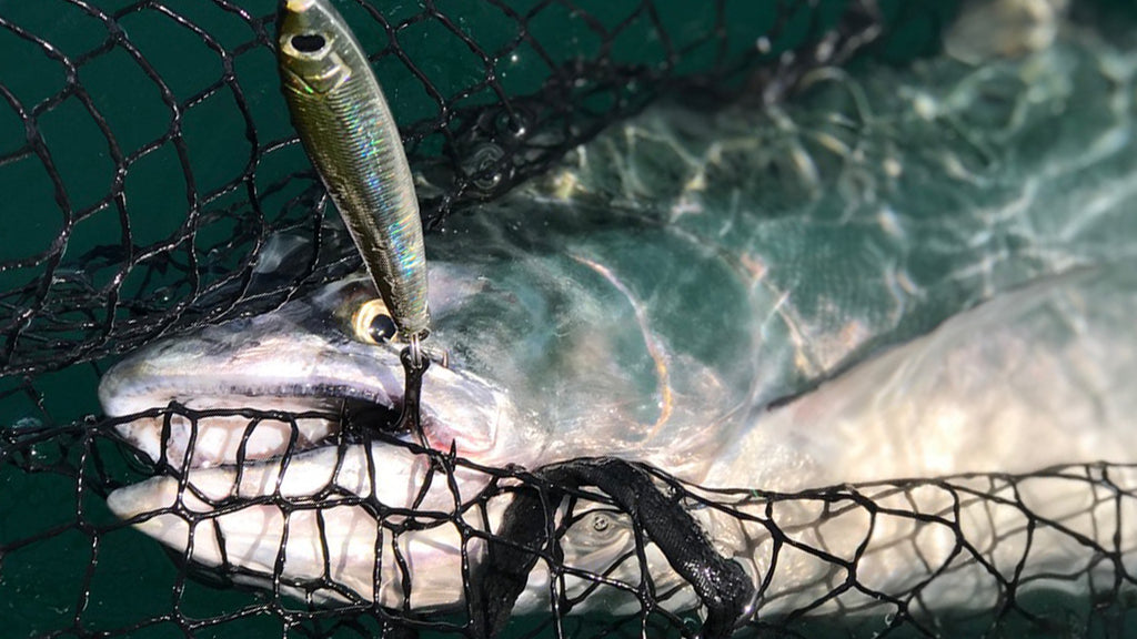 Hogy Sand Lance King Chinook Salmon Jigging Lure