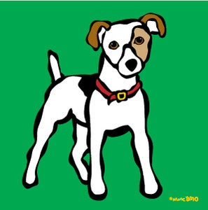 Jack Russel on Green