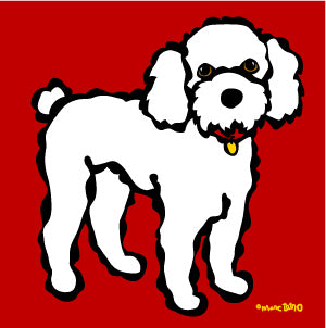 Poodle on Red