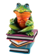 Frog Book Club Mini