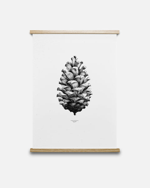 Nature 1:1 Pine Cone Black/White