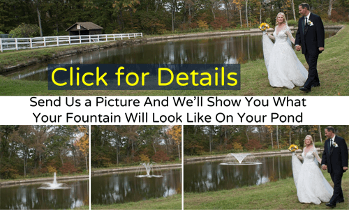 Visualize Your Choice of Fountain on Your Pond