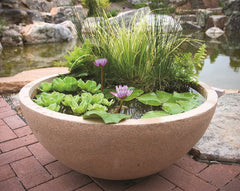 aquascape 98857 decorative planter bowl water garden